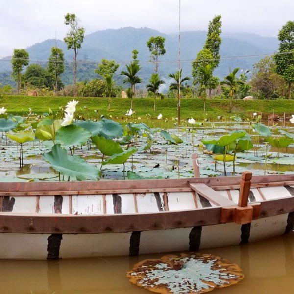 Парк Нячанг